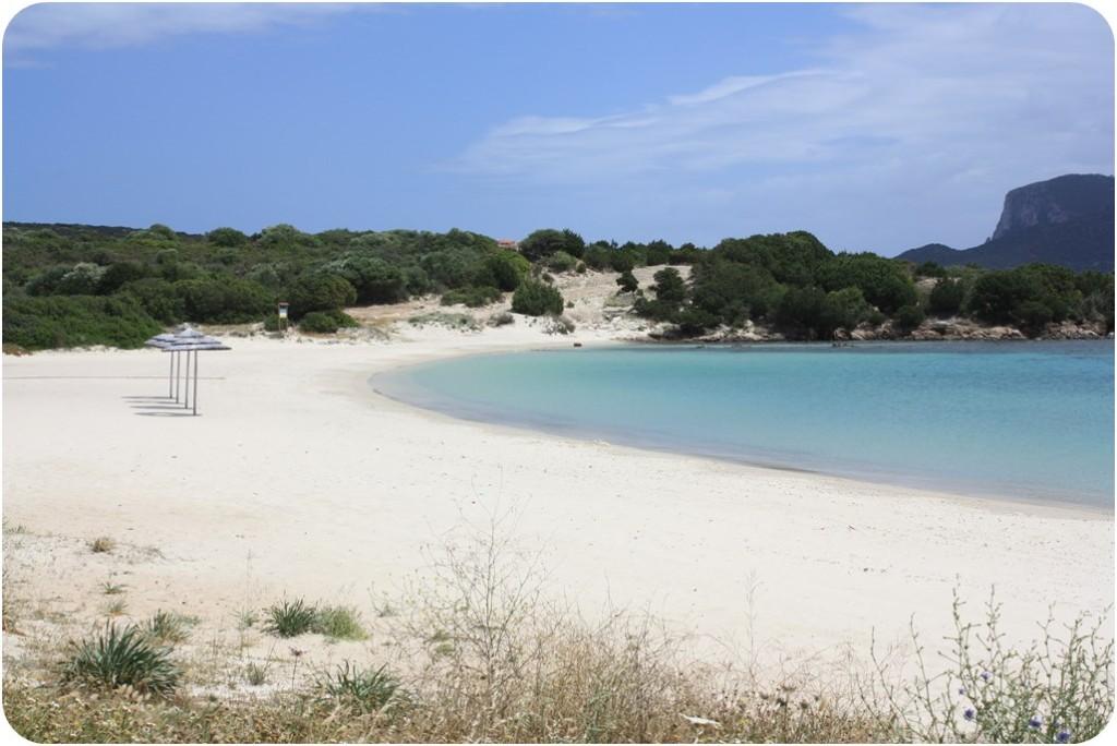 in der Nähe von Golfo Aranci Sardinien