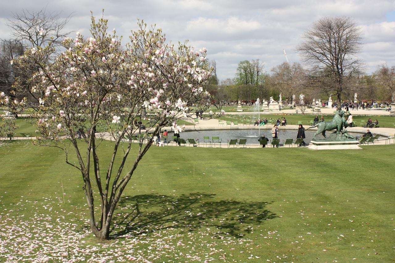 Paris Jardin du Tuileries