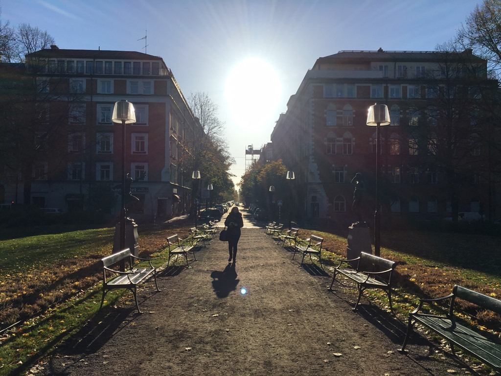 Stockholm Mariatorget in autumn